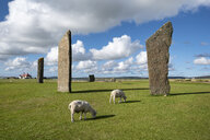 Great Britain, Scotland, Orkney, Mainland, Neolithic stone circle - ELF01942