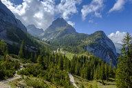 Austria, Tyrol, View to Ehrwalder Sonnenspitze, Seebenalm near Ehrwald, Mieminger Kette - LBF02225