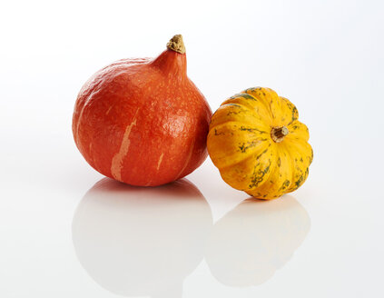 Hokkaido and yellow ornamental pumpkin on white ground - KSWF01980