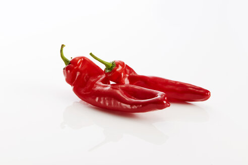 Two red pointed peppers against white backround - KSWF01995