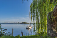 Germany, Mecklenburg-Western Pomerania, Zarrentin, Lauenburg Lakes Nature Park, Lake Schaalsee, sailing boat - FRF00768