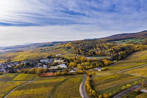 Germany, Hesse, Winkel, Oestrich, Rheingau, Aerial view in autumn - AMF06227