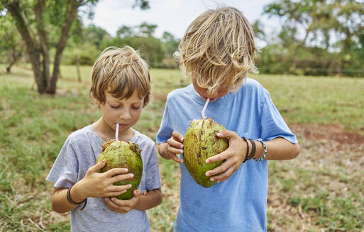 Brazil, Bonito, two boys drinking from coconut with straws - SSCF00009