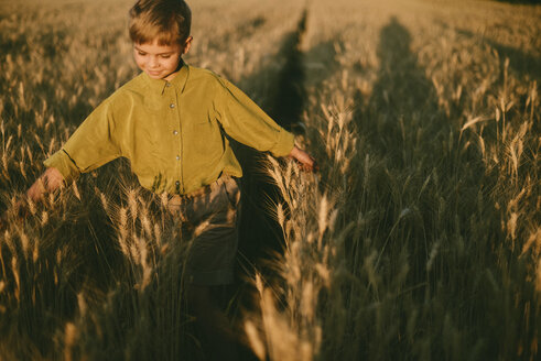 Carefree boy playing amidst wheat field during sunset - CAVF55906