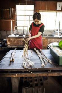 Woman standing at a table in a traditional Washi workshop, stripping bark and fibre off twigs and branches of plant material - MINF09598