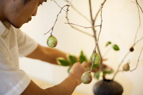 Japanese man working in a flower gallery, working on Ikebana arrangement. - MINF09643