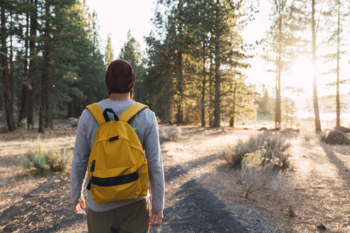 USA, North California, rear view of young man on a path in a forest near Lassen Volcanic National Park - KKAF02975