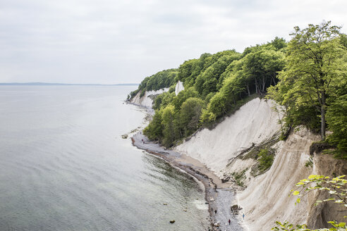 Germany, Mecklenburg-Western Pomerania, Ruegen, Jasmund National Park, chalk cliff - MAMF00235