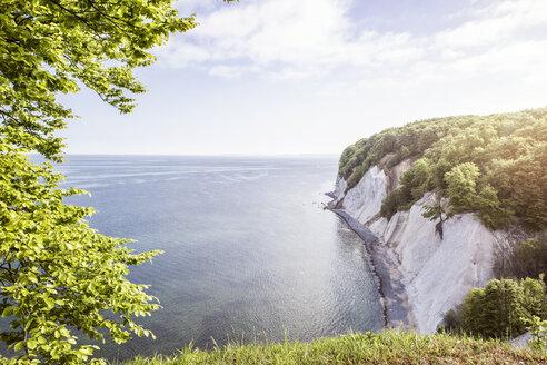 Germany, Mecklenburg-Western Pomerania, Ruegen, Jasmund National Park, chalk cliff - MAMF00238