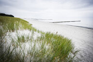 Germany, Mecklenburg-Western Pomerania, Zingst, beach - FDF00254