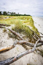 Germany, Mecklenburg-Western Pomerania, Zingst, beach - FDF00263