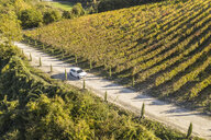 Italy, Tuscany, Siena, car driving on dirt track through a vineyard - FBAF00178