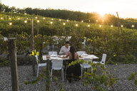 Italy, Tuscany, Siena, young couple having dinner in a vineyard - FBAF00181