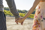 Italy, Tuscany, Siena, close-up of couple hand in hand in a vineyard - FBAF00196