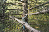 Little girl climbing in the trees - MOEF01656