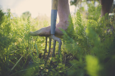 Low section of man using gardening fork at community garden - CAVF56248