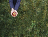 Midsection of girl holding apple while standing on grassy field at orchard - CAVF56299