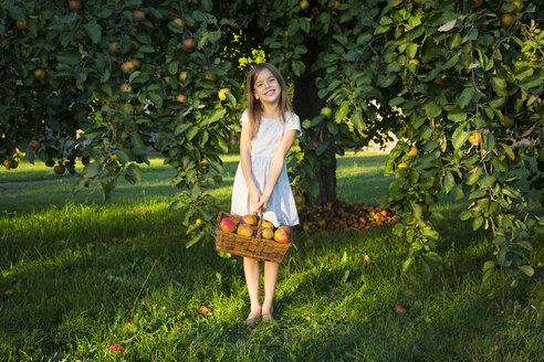 Portrait of smiling little girl with wickerbasket of picked apples standing barefoot on a meadow - LVF07574