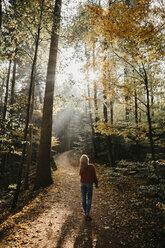 Germany, Black Forest, Sitzenkirch, woman walking in autumnal forest - LHPF00158