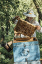 Russland, Beekeeper checking frame with honeybees - VPIF01141