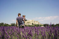 France, Grignan, father and little daughter together in lavender field - GEMF02608