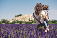 France, Grignan, back view of mother and little daughter together in lavender field looking at village - GEMF02623