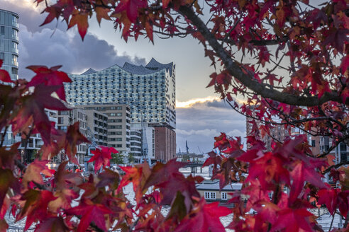 Germany, Hamburg, Elbe Philharmonic Hall in autumn - KEBF01005