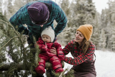 Parents looking at cute daughter sitting on pine tree in forest during winter - CAVF56849
