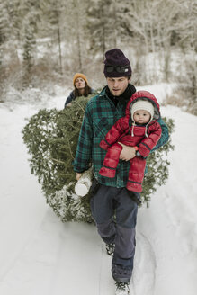 Parents with daughter pulling pine tree in forest during winter - CAVF56852