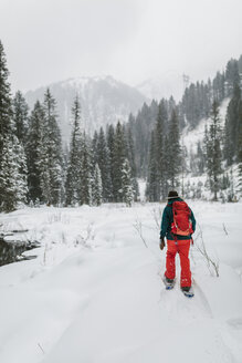 Rear view of woman with backpack walking on snow covered field in forest - CAVF56855