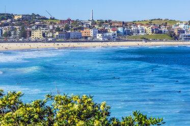 Australia, New South Wales, Sydney, Bondi Beach - THAF02387