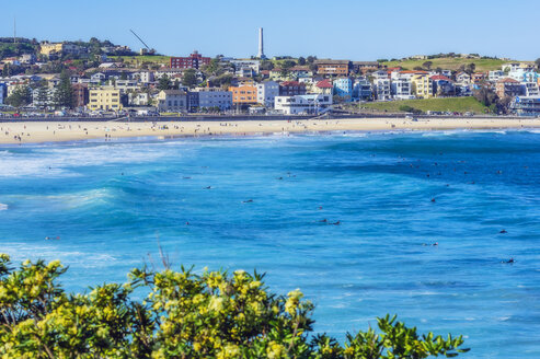 Australia, New South Wales, Sydney, Bondi Beach - THAF02387