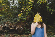 Girl holding leaf in front of face while standing at park during autumn - CAVF57441
