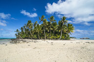 Cook Islands, Rarotonga, Aitutaki lagoon, white sand beach and palm beach - RUNF00282