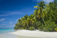 Cook Islands, Rarotonga, Aitutaki lagoon, white sand beach and palm beach - RUNF00288
