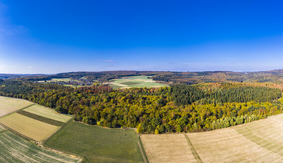 Germany, Hesse, Hochtaunuskreis, Aerial view of forest and fields in autumn - AMF06318