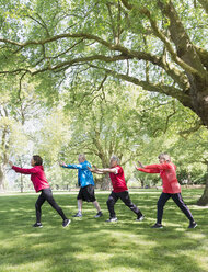 Active seniors practicing tai chi in park under tree - CAIF22320