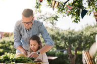 Grandfather teaching granddaughter to cut vegetable at table in backyard - MASF10286