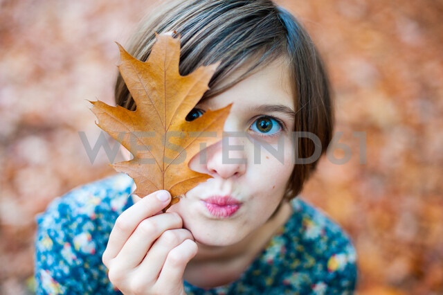 Head shot of a girl holding an autumn leaf - INGF08417 - Ingram Image/Westend61