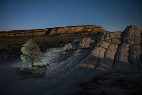 High angle scenic view of tree on Marble Canyon against star field - CAVF57676