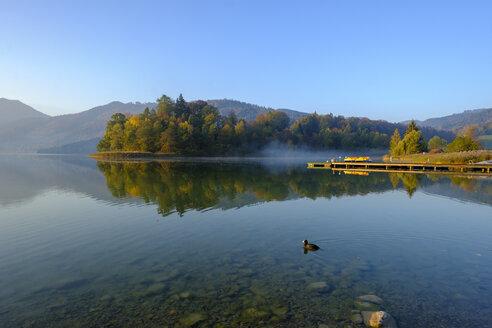 Germany, Upper Bavaria, Lake Schliersee, morning mood at spa park - LBF02277