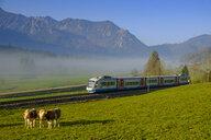Germany, Upper Bavaria, Bayerische Oberlandbahn near Aurach - LB02283