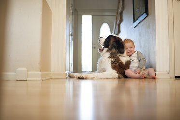 Cute baby boy sitting with dog at home - CAVF57897