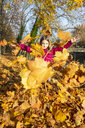 Girl throwing autumn leaves in the air - SARF03997