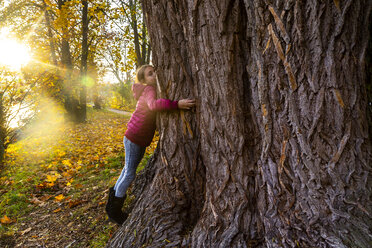 Girl hugging big tree in autumn - SARF04000