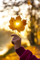 Girl's hand holding autumn leaf with heart-shaped hole at sunset - SARF04003