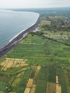 Indonesia, Bali, Keramas, Aerial view of Klotok beach, rice fields - KNTF02461