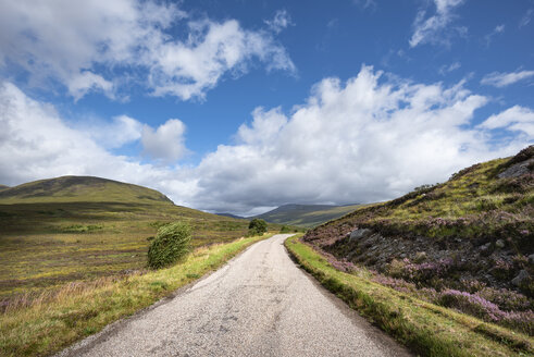 United Kingdom, Scotland, Sutherland, Lairg, Northwest Highlands, Single track road - ELF01973