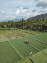 Indonesia, Bali, Candidasa, Aerial view of rice fields - KNTF02486