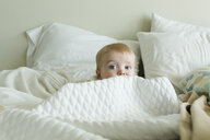 Cute baby boy hiding amidst duvet on bed at home - CAVF58106